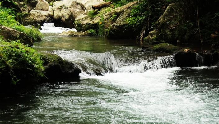 Rafting Bali Paling Bagus dengan Nuansa Alami di Sungai Pakerisan